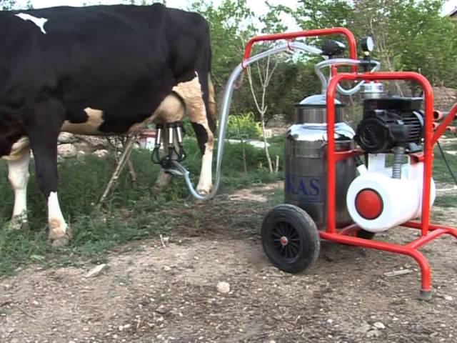 Доильные аппараты для коров в домашних условиях цена б у